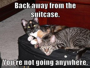 Back away from the suitcase.  You're not going anywhere.
