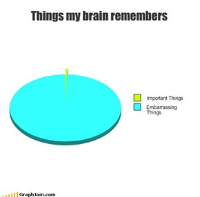 Things my brain remembers