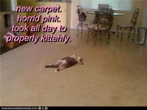 new carpet. horrid pink. took all day to properly kittehfy.