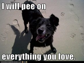I will pee on  everything you love.
