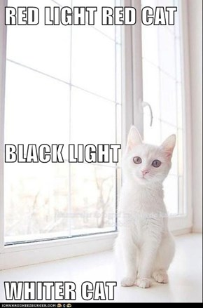 RED LIGHT RED CAT BLACK LIGHT WHITER CAT