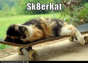 Sk8erKat