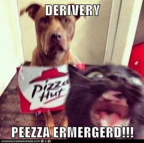 DERIVERY  PEEZZA ERMERGERD!!!