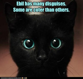 Ebil has many disguises. Some are cuter than others.