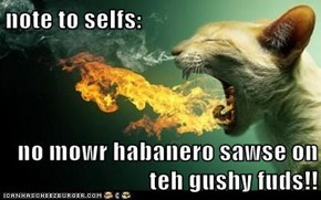 note to selfs:  no mowr habanero sawse on teh gushy fuds!!