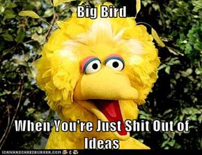 Big Bird  When You're Just Shit Out of Ideas