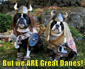 But we ARE Great Danes!