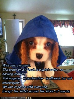 Welcome, stranger. The order of St.Pooch is a quiet order; no barking allowed. Tail wagging - in moderation - is allowed, but not encouraged. We live in peace with everyone. Except the kitteh across the street of course.