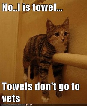 No..I is towel...  Towels don't go to vets