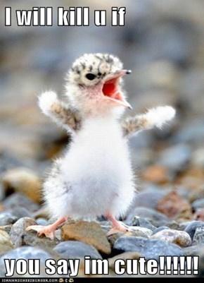 I will kill u if  you say im cute!!!!!!