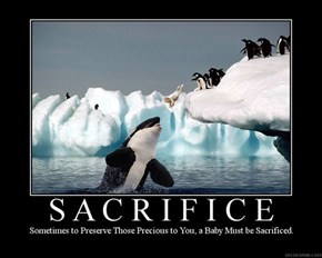 What Does Sacrifice Mean?