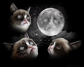 Three Grump Moon