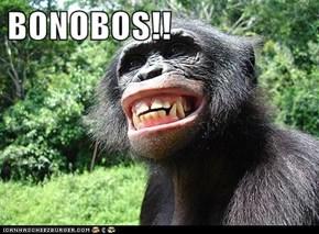 BONOBOS!!