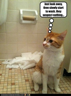 Just look away, then slowly start to wash, they suspect nothing...