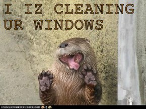 I IZ CLEANING UR WINDOWS