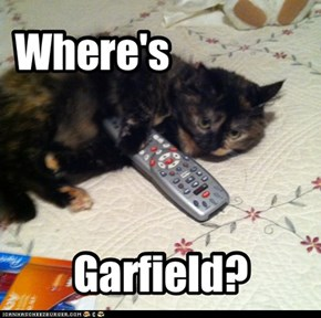 I want Garfield