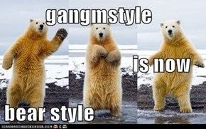 gangmstyle                                is now bear style