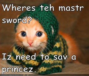 Wheres teh mastr sword?  Iz need to sav a princez.