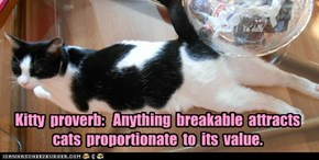 Kitty  proverb:   Anything  breakable  attracts  cats  proportionate  to  its  value.