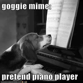 goggie mime:  pretend piano player