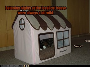 Saturday nights at the local cat house were always a bit wild.