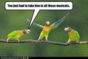 You just had to take him to all those musicals..