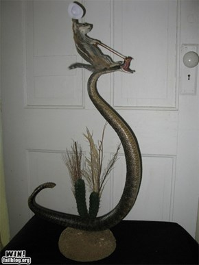 Taxidermy WTF WIN