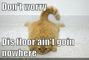 Don't worry  Dis floor ain't goin  nowhere