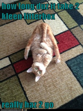 how long duz it take 2 kleen litterbox  really haz 2 go