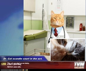 Dr. Cat scandle court in the act. - This cat operated on me today. Is this a good thing.   But he's sooo cute.