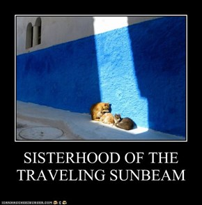 SISTERHOOD OF THE TRAVELING SUNBEAM
