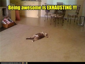 Being awesome is EXHAUSTING !!!