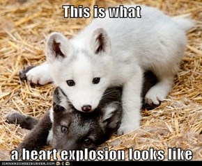 This is what  a heart explosion looks like