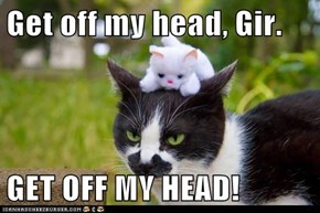 Get off my head, Gir.  GET OFF MY HEAD!