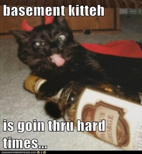 basement kitteh  is goin thru hard times...
