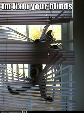 im fixin your blinds