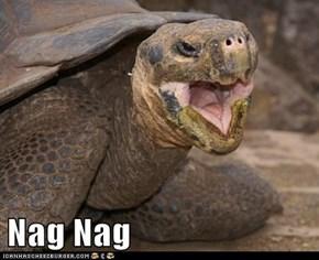 Nag Nag
