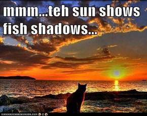 mmm...teh sun shows fish shadows...
