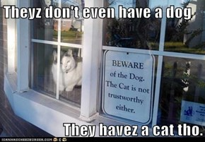 Theyz don't even have a dog  They havez a cat tho.