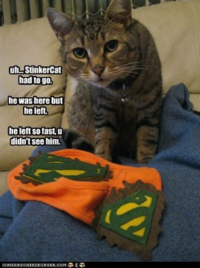 uh... StinkerCat had to go.    he was here but he left.  he left so fast, u didn't see him.