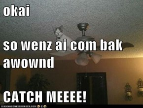 okai so wenz ai com bak awownd CATCH MEEEE!