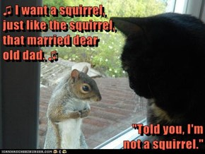 "♫ I want a squirrel,                                            just like the squirrel,                                            that married dear                                             old dad. ♫  ""Told you, I'm"