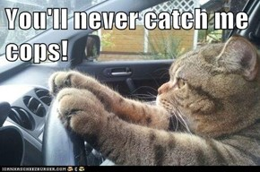 You'll never catch me cops!