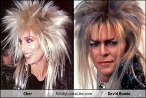 Cher Totally Looks Like David Bowie