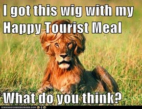 I got this wig with my Happy Tourist Meal  What do you think?