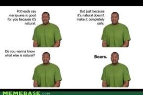 Da bears.