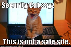Security Cat sayz  This is not a safe site.