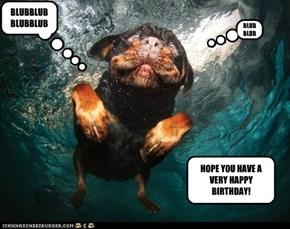 Water birthday
