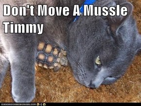 Don't Move A Mussle Timmy
