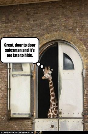 Great, door to door salesman and it's too late to hide.
